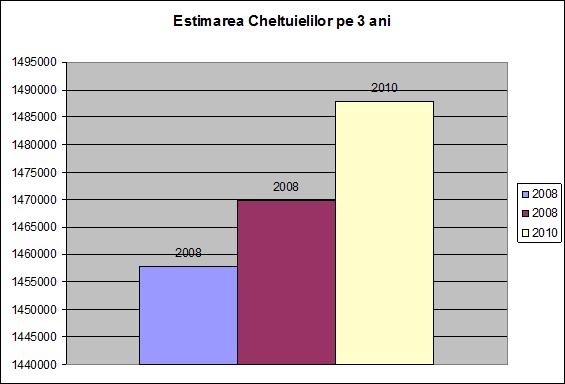 estimarea cheltuielilor pe 3 ani